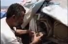 فلم فردوس اليمن النسخة العربية